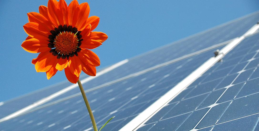 let hierop bij aanschaf zonnepanelen SGZZ